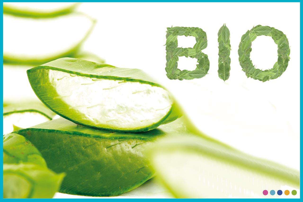Image Tout savoir sur les cosmetiques biologiques !